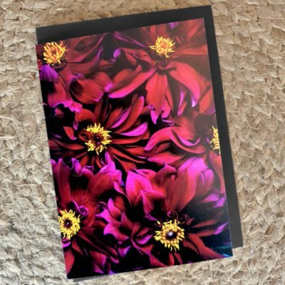 madrid raspberry dahlia card
